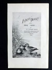 Baker & Gronvold Indian Ducks 1908 Indian Ducks and their Allies Title Page